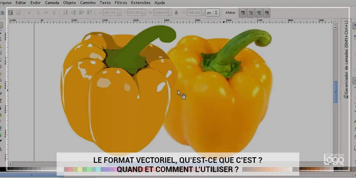 Le format vectoriel, qu'est-ce que c'est ? Quand et comment l'utiliser ?