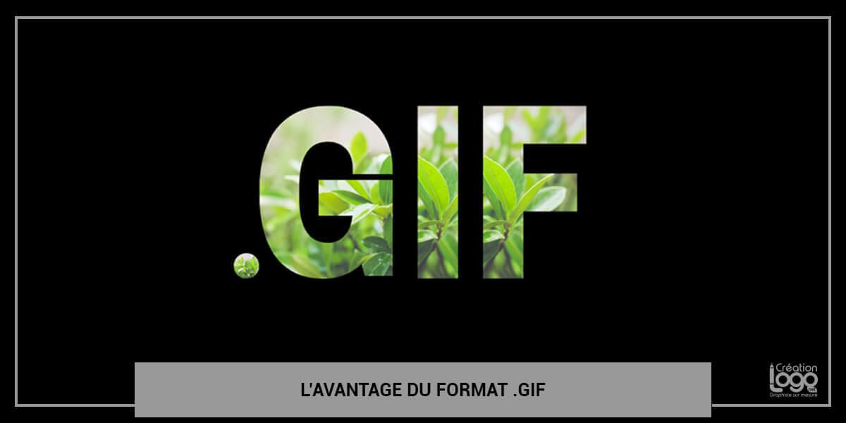 L'avantage du format .GIF